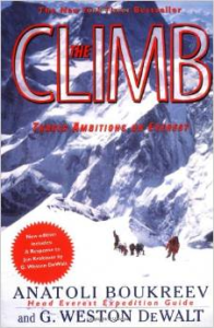 The Climb (nook book)